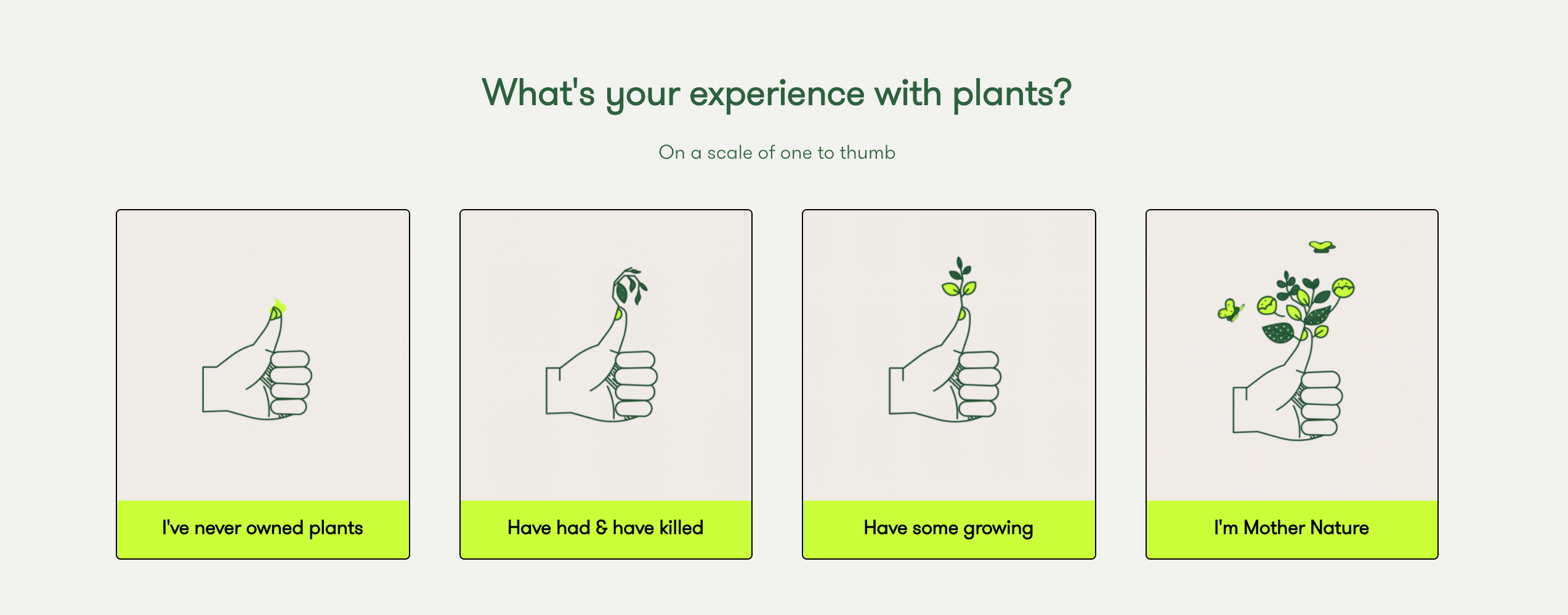 Rooted plant quiz